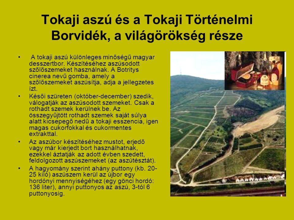 Tokaji aszú és a Tokaji Történelmi Borvidék, a világörökség része