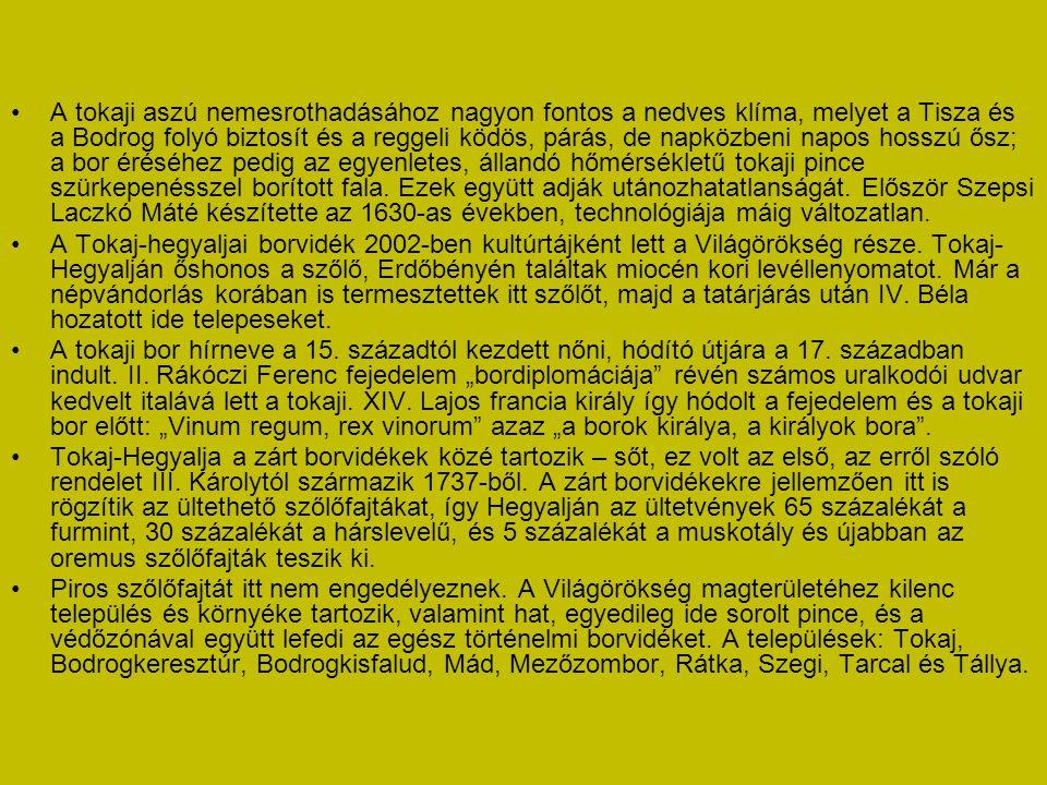 A tokaji aszú nemesrothadásához nagyon fontos a nedves klíma, melyet a Tisza és a Bodrog folyó biztosít és a reggeli ködös, párás, de napközbeni napos hosszú ősz; a bor éréséhez pedig az egyenletes, állandó hőmérsékletű tokaji pince szürkepenésszel borított fala. Ezek együtt adják utánozhatatlanságát. Először Szepsi Laczkó Máté készítette az 1630-as években, technológiája máig változatlan.