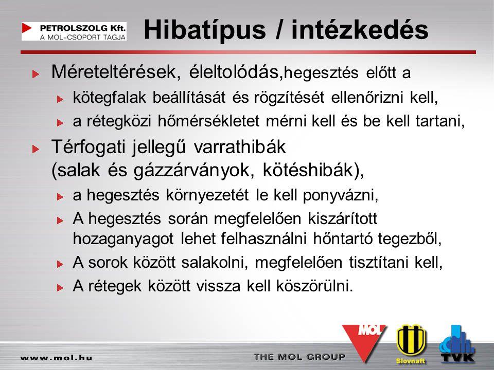Hibatípus / intézkedés