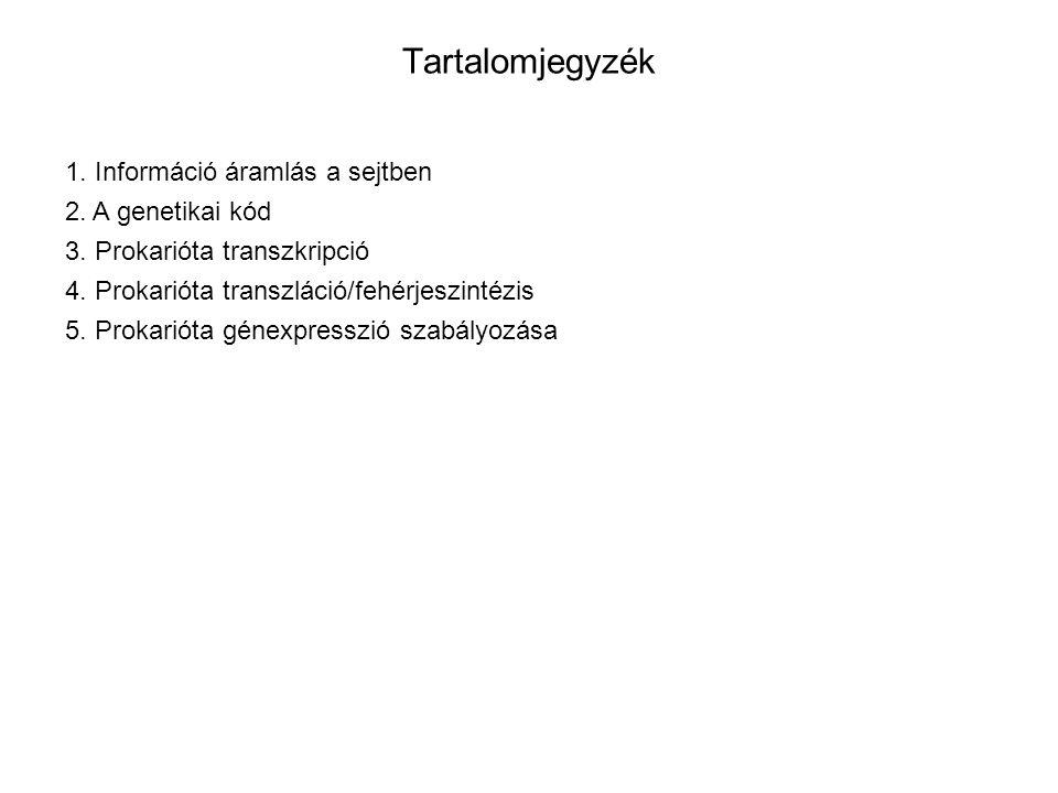Tartalomjegyzék 1. Információ áramlás a sejtben 2. A genetikai kód
