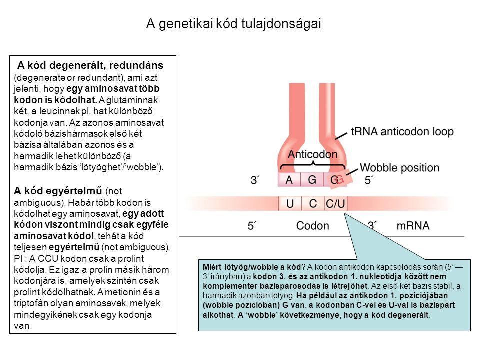A genetikai kód tulajdonságai