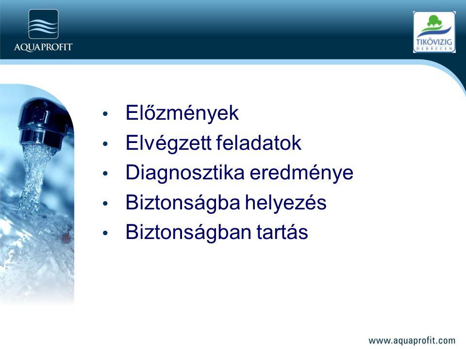 Előzmények Elvégzett feladatok Diagnosztika eredménye Biztonságba helyezés Biztonságban tartás