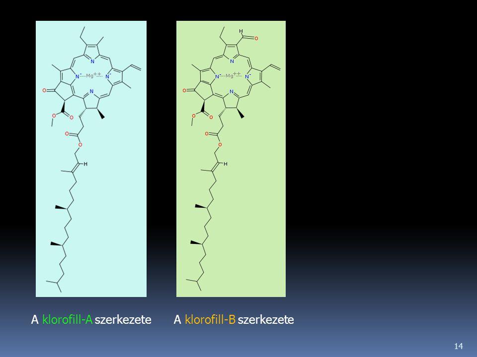 A klorofill-A szerkezete