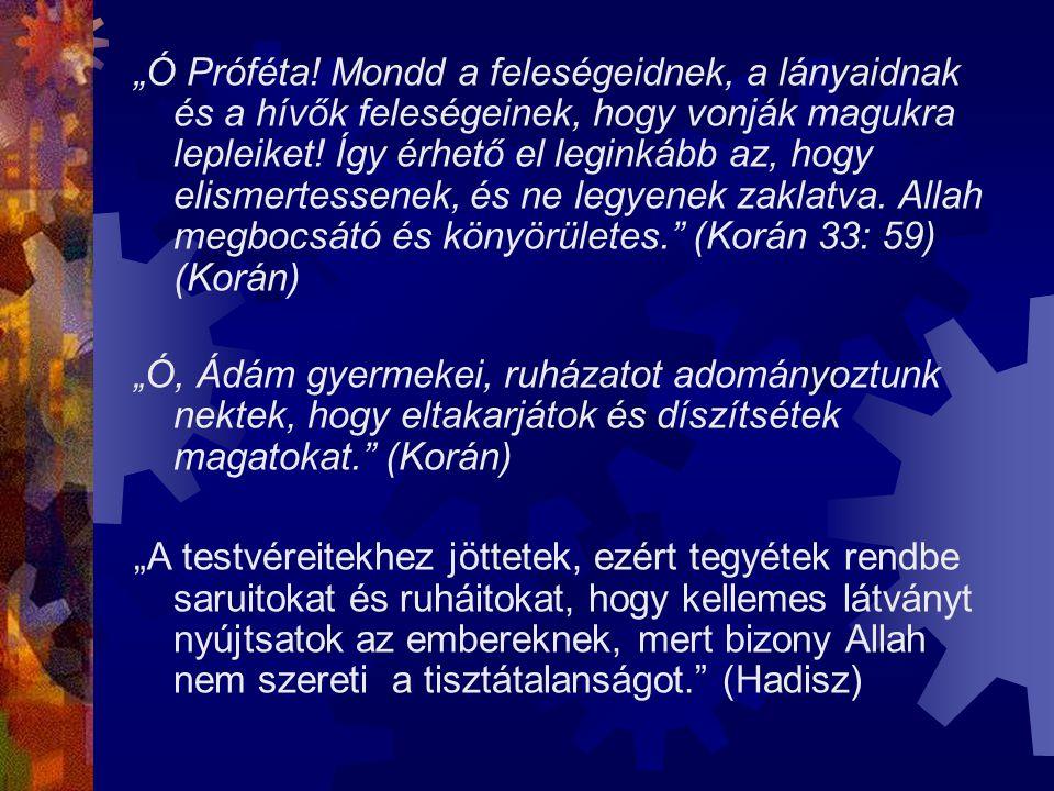 """""""Ó Próféta! Mondd a feleségeidnek, a lányaidnak és a hívők feleségeinek, hogy vonják magukra lepleiket! Így érhető el leginkább az, hogy elismertessenek, és ne legyenek zaklatva. Allah megbocsátó és könyörületes. (Korán 33: 59) (Korán)"""
