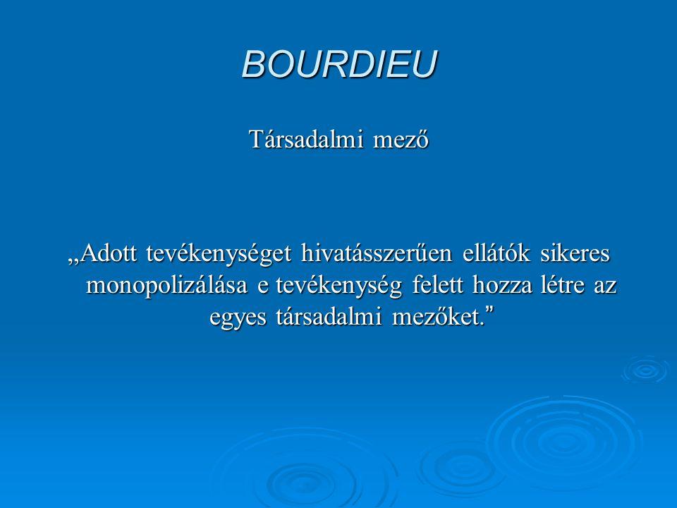 BOURDIEU Társadalmi mező