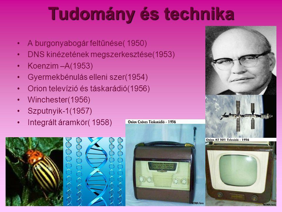 Tudomány és technika A burgonyabogár feltűnése( 1950)