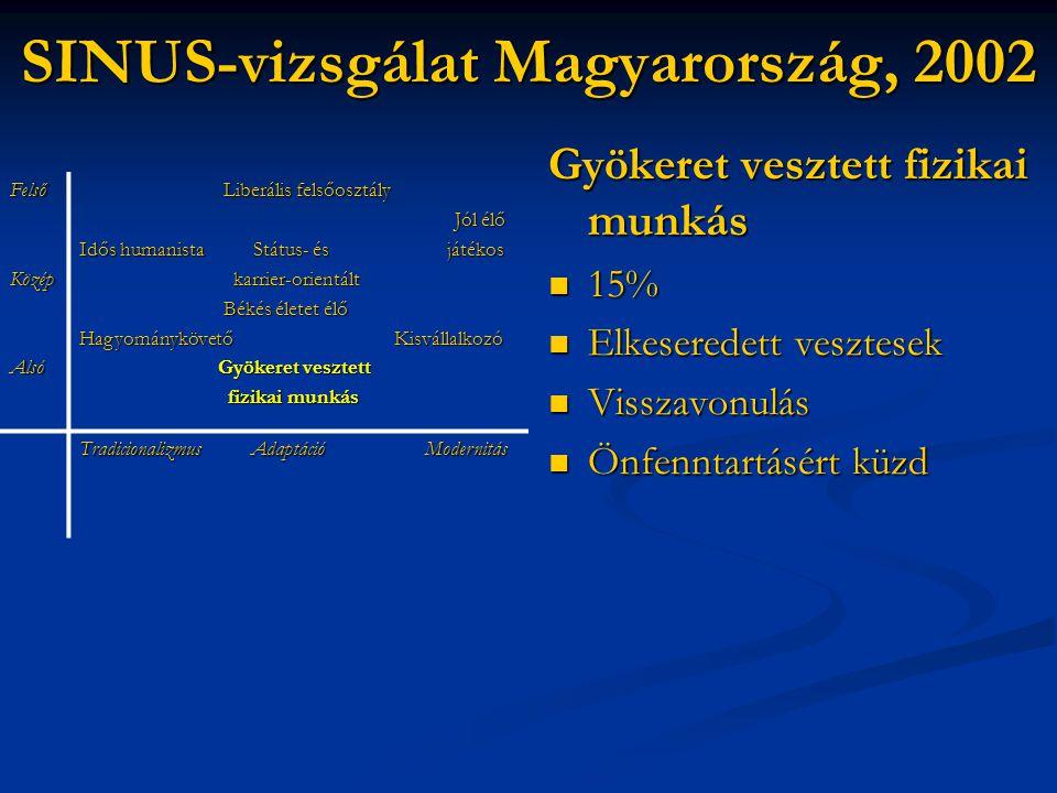SINUS-vizsgálat Magyarország, 2002