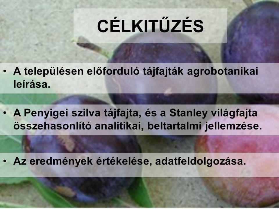 CÉLKITŰZÉS A településen előforduló tájfajták agrobotanikai leírása.