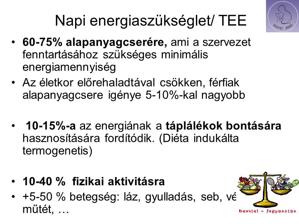 Napi energiaszükséglet/ TEE
