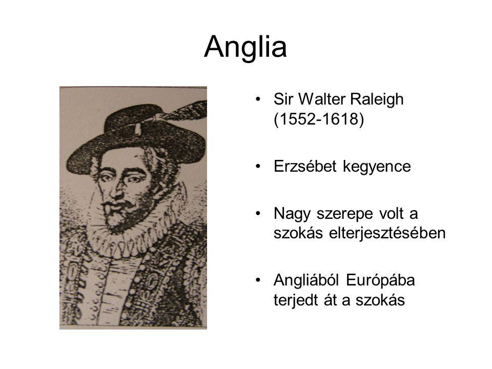 Anglia Sir Walter Raleigh (1552-1618) Erzsébet kegyence