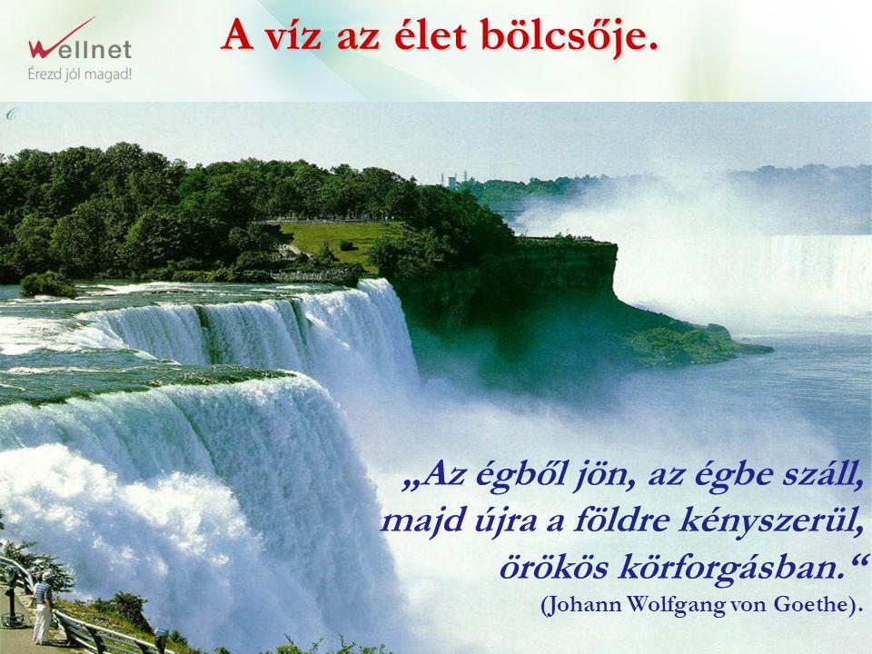 """A víz az élet bölcsője. """"Az égből jön, az égbe száll,"""
