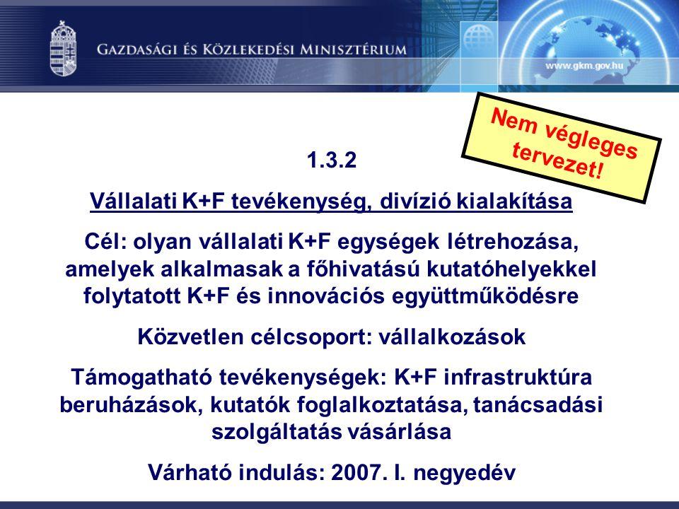 Vállalati K+F tevékenység, divízió kialakítása