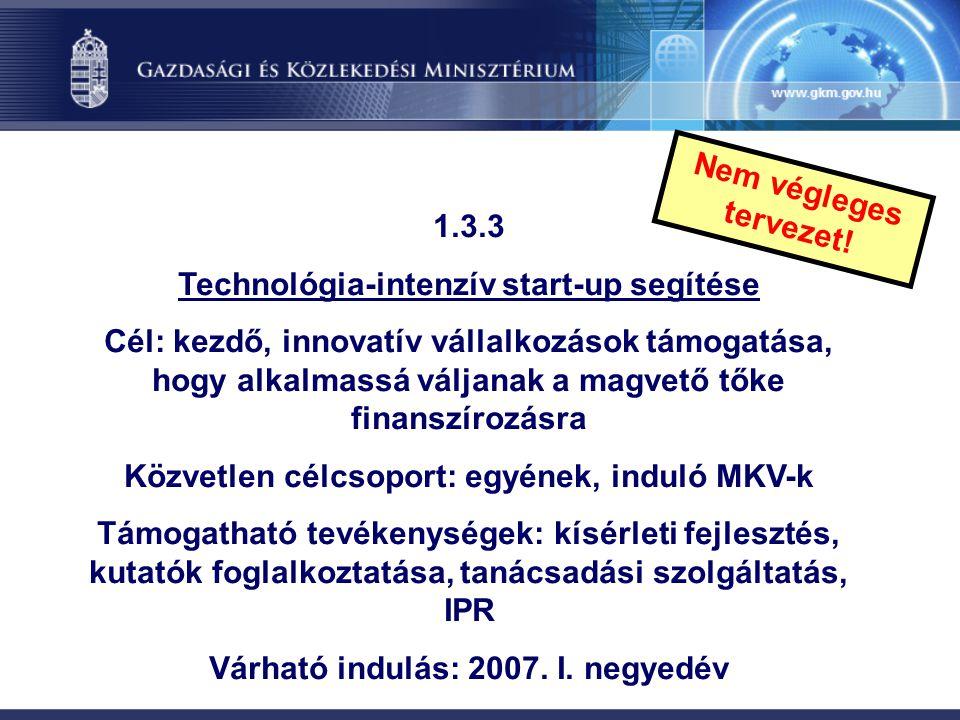 Technológia-intenzív start-up segítése