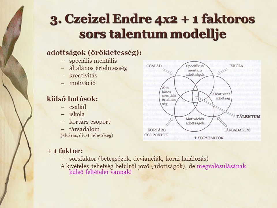 3. Czeizel Endre 4x2 + 1 faktoros sors talentum modellje