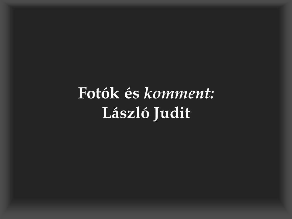 Fotók és komment: László Judit