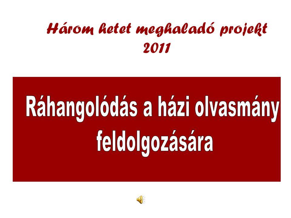 Három hetet meghaladó projekt 2011