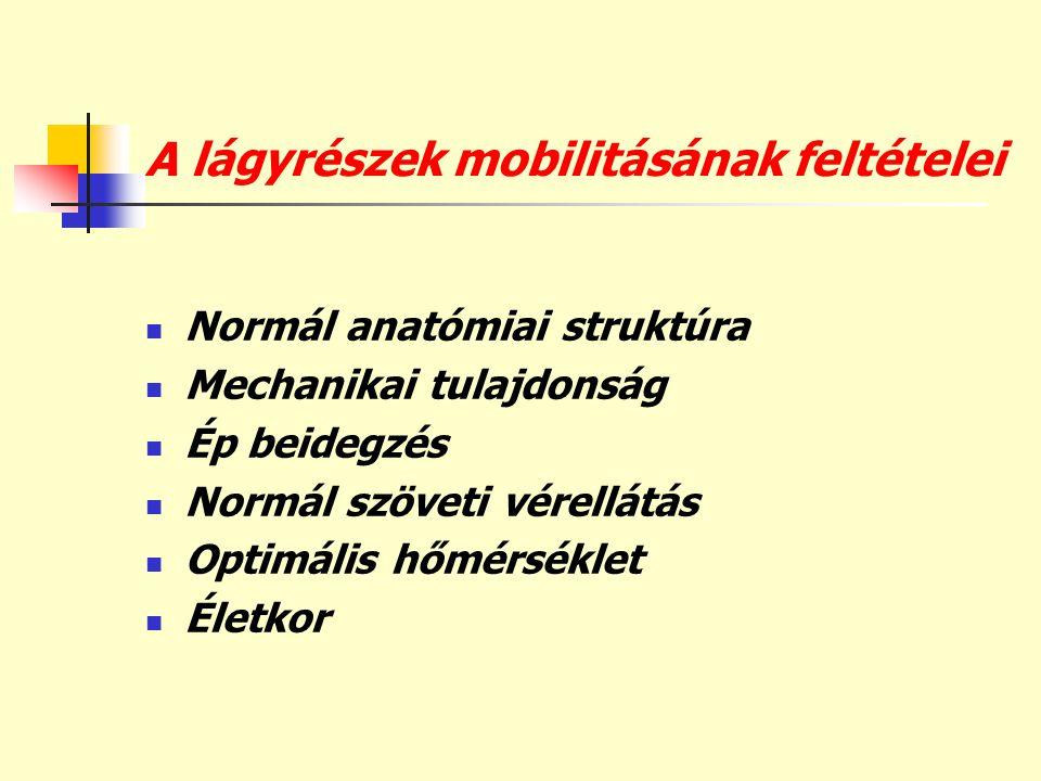 A lágyrészek mobilitásának feltételei
