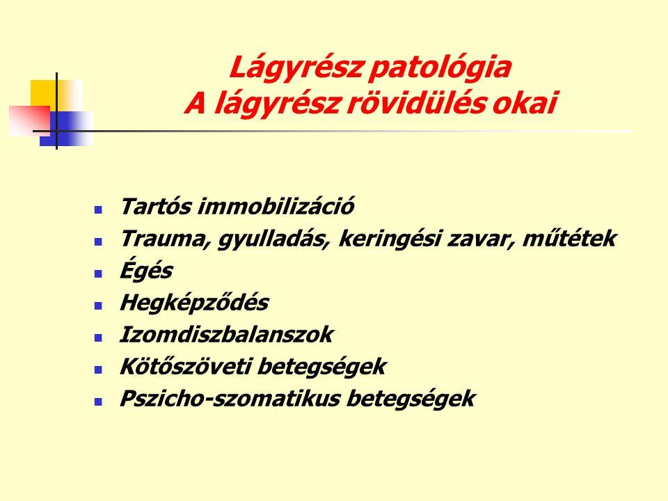 Lágyrész patológia A lágyrész rövidülés okai