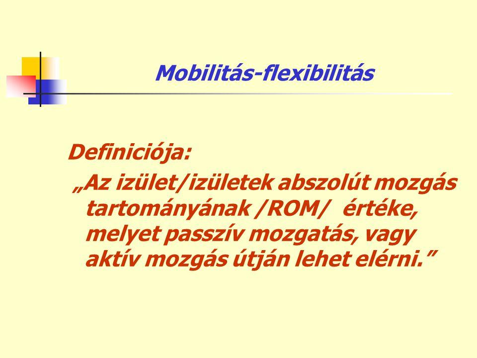 Mobilitás-flexibilitás