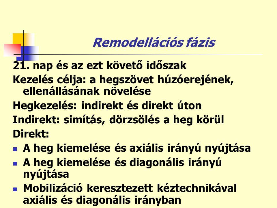 Remodellációs fázis 21. nap és az ezt követő időszak