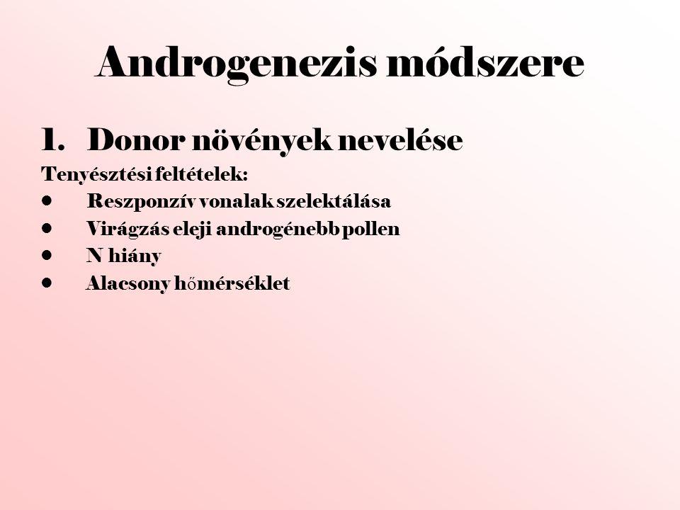 Androgenezis módszere