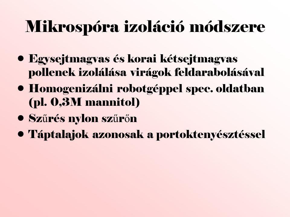 Mikrospóra izoláció módszere