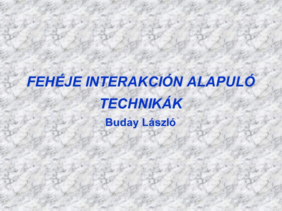FEHÉJE INTERAKCIÓN ALAPULÓ