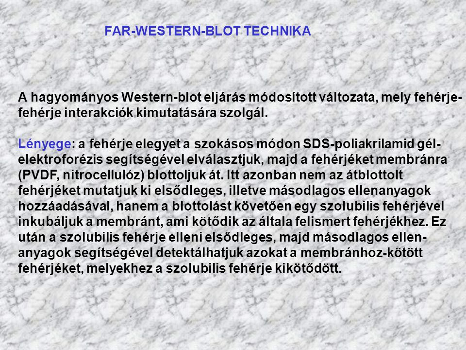 FAR-WESTERN-BLOT TECHNIKA
