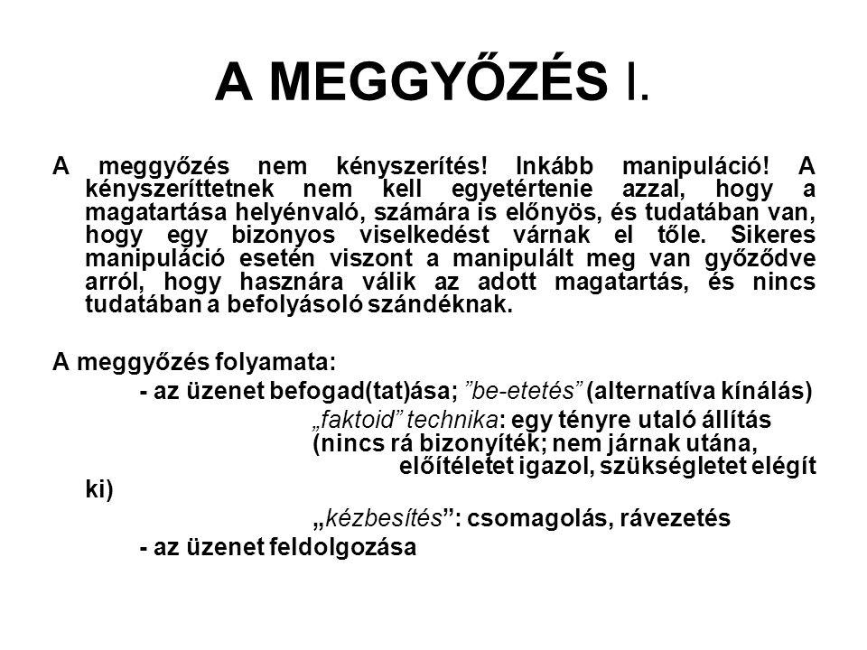 A MEGGYŐZÉS I.