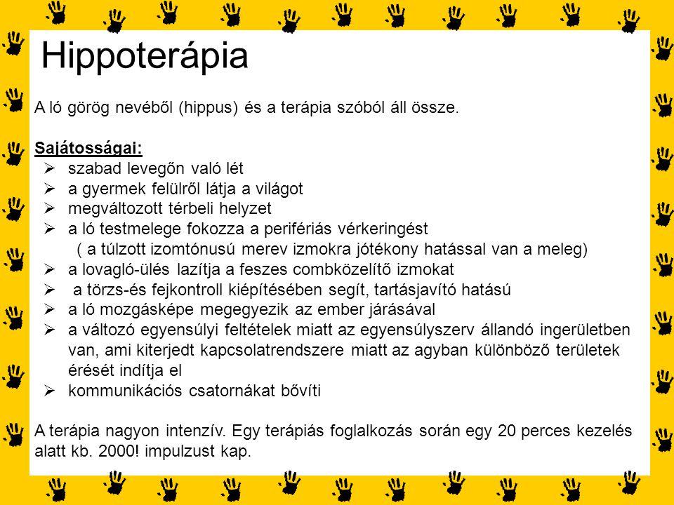 Hippoterápia A ló görög nevéből (hippus) és a terápia szóból áll össze. Sajátosságai: szabad levegőn való lét.