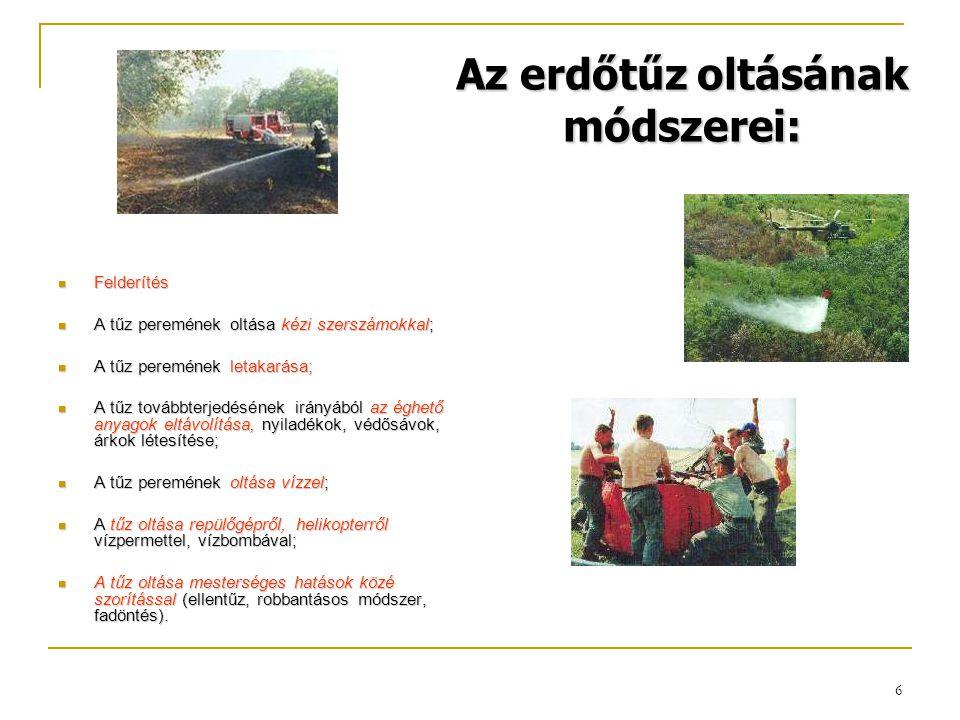 Az erdőtűz oltásának módszerei: