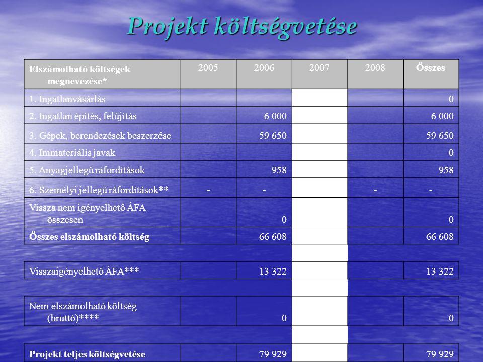 Projekt költségvetése