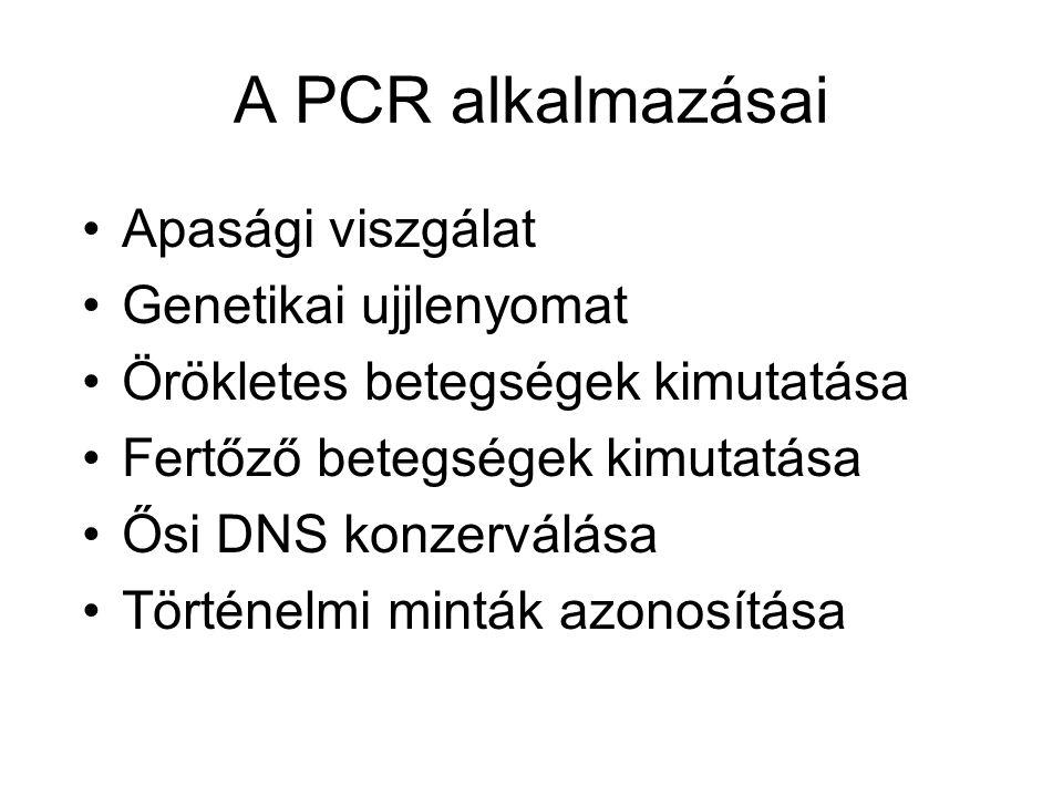 A PCR alkalmazásai Apasági viszgálat Genetikai ujjlenyomat