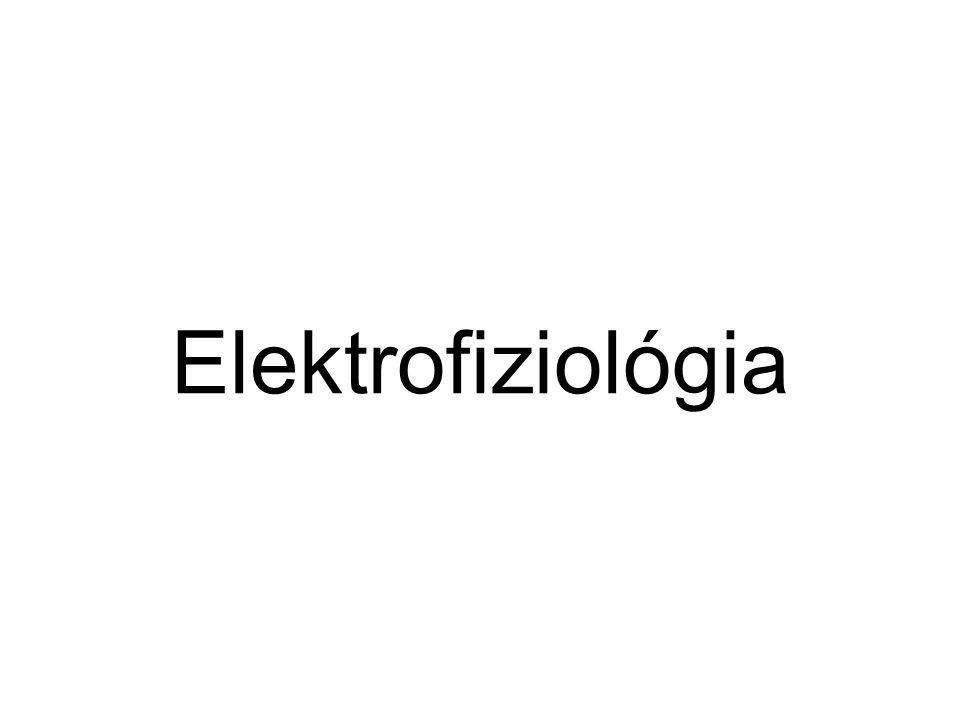 Elektrofiziológia