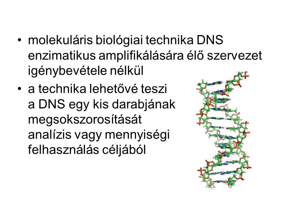 molekuláris biológiai technika DNS enzimatikus amplifikálására élő szervezet igénybevétele nélkül