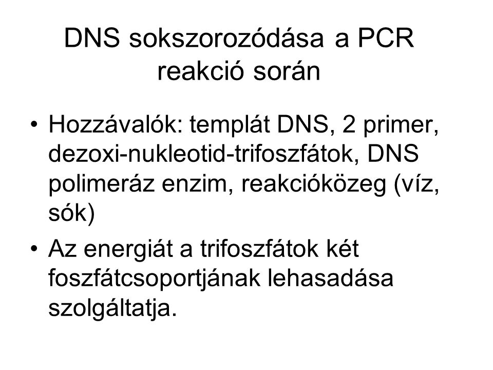 DNS sokszorozódása a PCR reakció során
