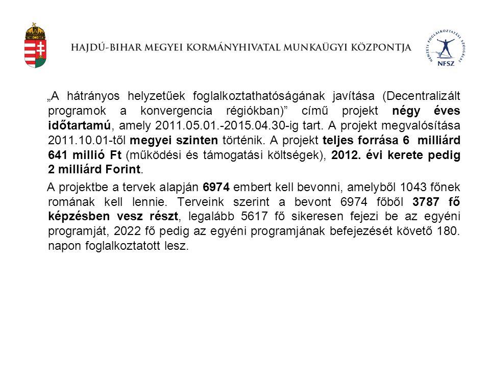 """""""A hátrányos helyzetűek foglalkoztathatóságának javítása (Decentralizált programok a konvergencia régiókban) című projekt négy éves időtartamú, amely 2011.05.01.-2015.04.30-ig tart. A projekt megvalósítása 2011.10.01-től megyei szinten történik. A projekt teljes forrása 6 milliárd 641 millió Ft (működési és támogatási költségek), 2012. évi kerete pedig 2 milliárd Forint."""