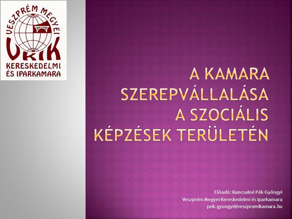 A kamara szerepvállalása a szociális képzések területén