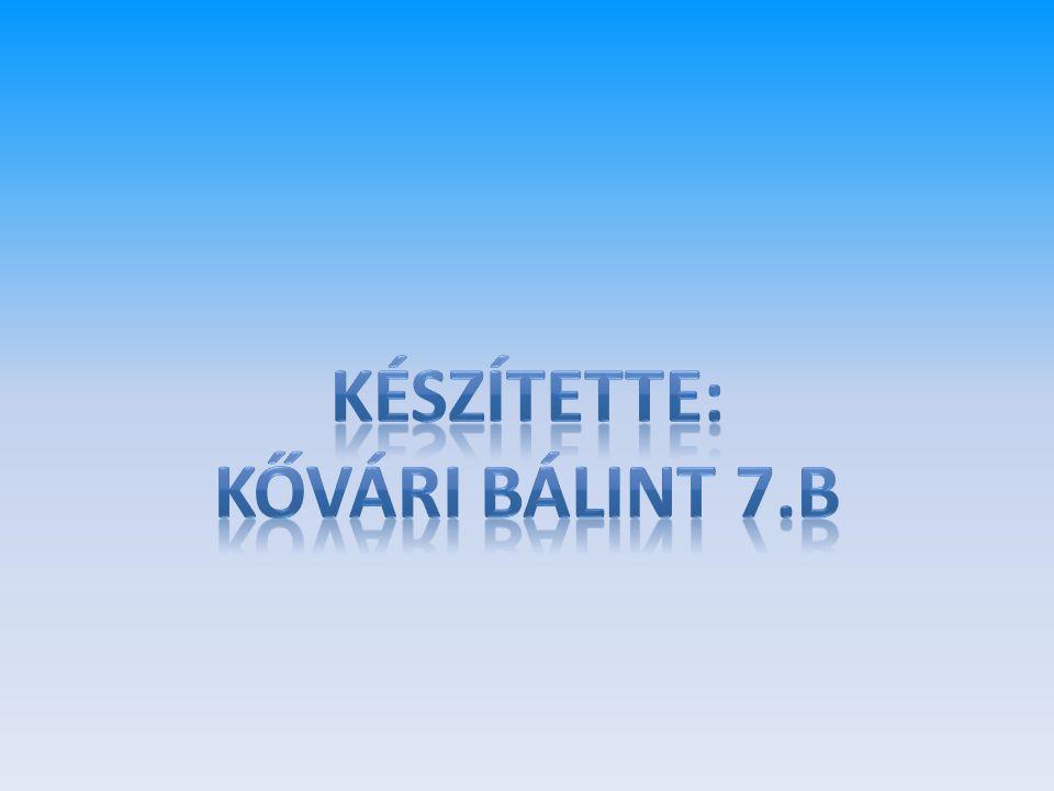 KÉSZÍTETTE: KŐVÁRI BÁLINT 7.b