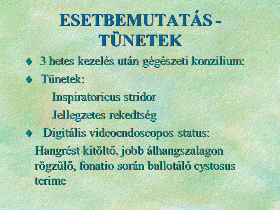 ESETBEMUTATÁS - TÜNETEK