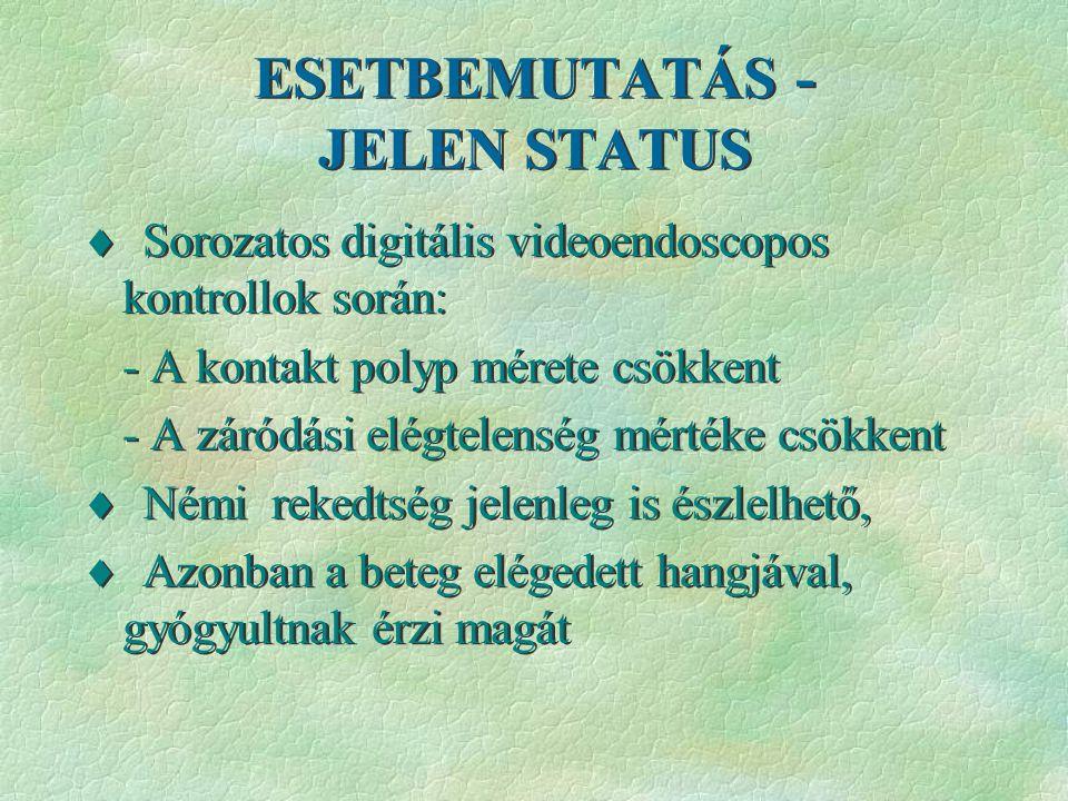 ESETBEMUTATÁS - JELEN STATUS