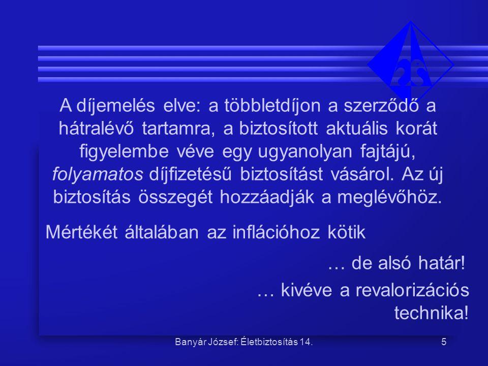 Banyár József: Életbiztosítás 14.