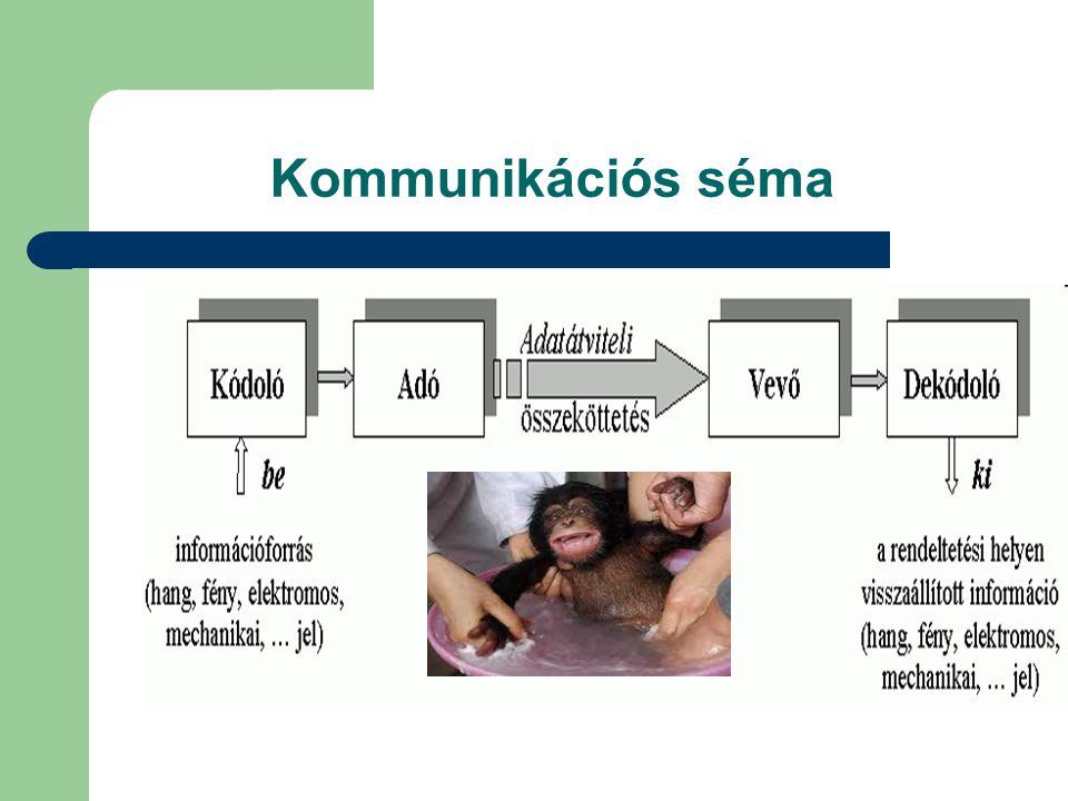 Kommunikációs séma