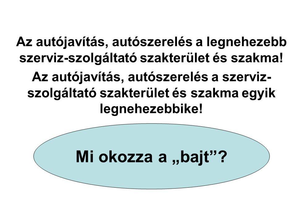 Az autójavítás, autószerelés a legnehezebb szerviz-szolgáltató szakterület és szakma!