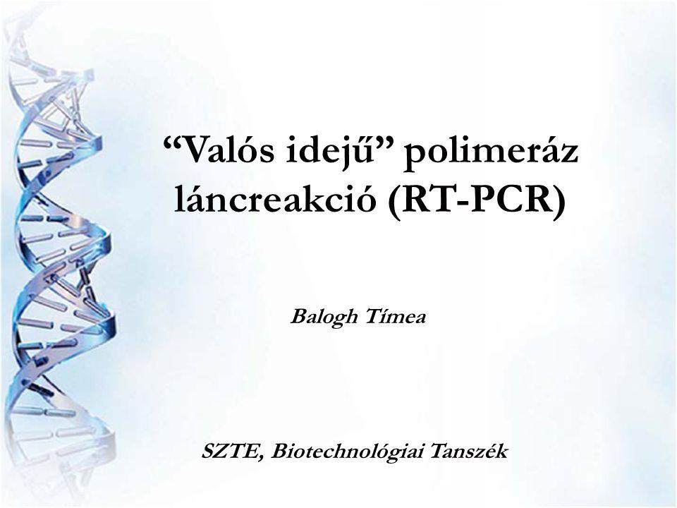 Valós idejű polimeráz láncreakció (RT-PCR)