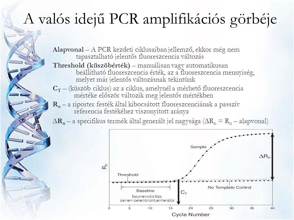 A valós idejű PCR amplifikációs görbéje