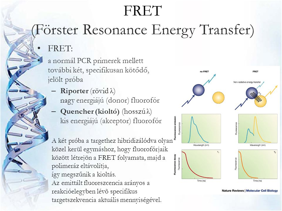 FRET (Förster Resonance Energy Transfer)