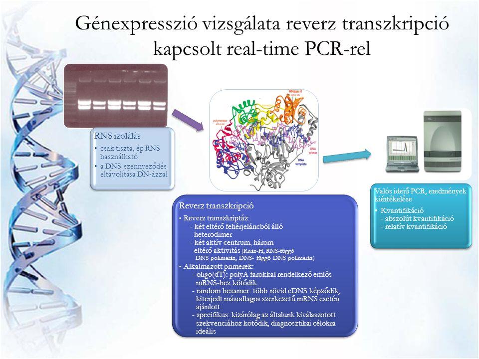 Génexpresszió vizsgálata reverz transzkripció kapcsolt real-time PCR-rel