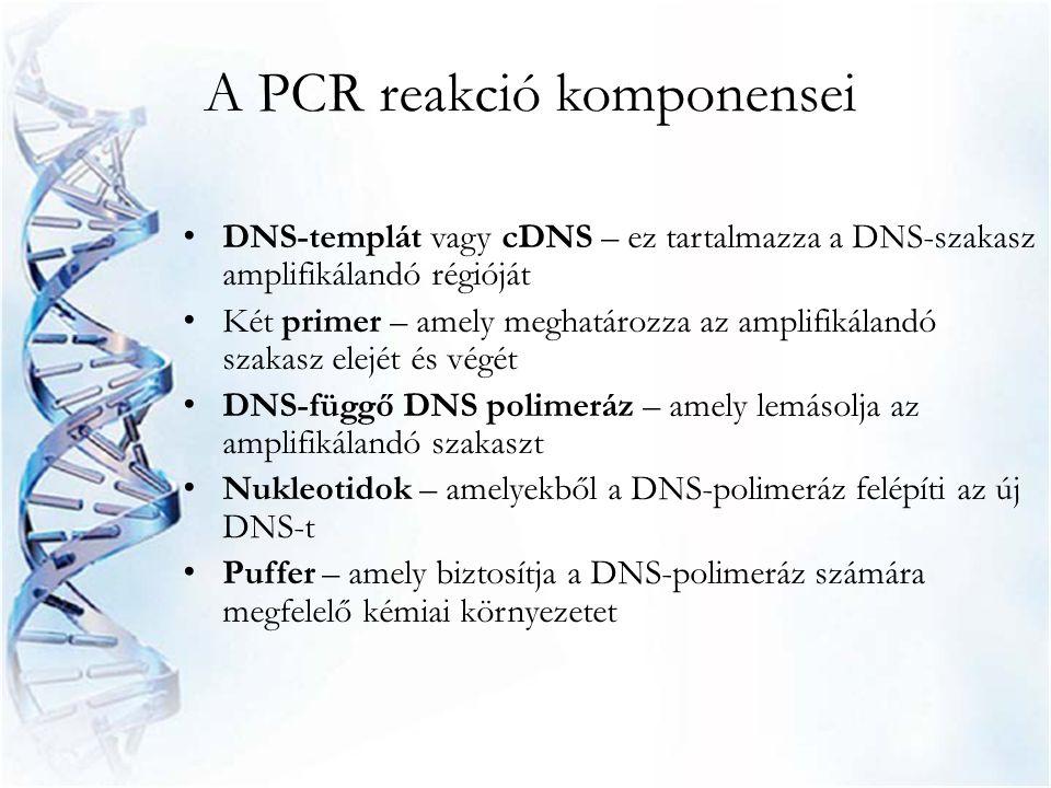 A PCR reakció komponensei