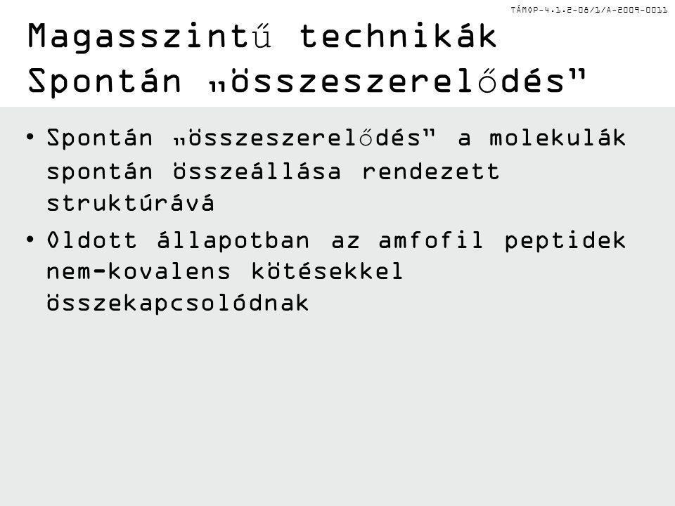 """Magasszintű technikák Spontán """"összeszerelődés"""